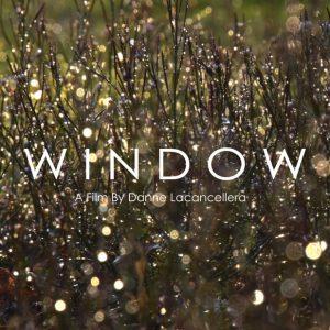 window-poster